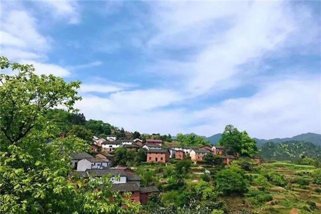 """杭州有个""""秘密花园""""美到不可方物!也许会成为下一个热门奖旅点"""